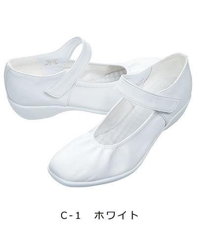 CL-0266-1.jpg
